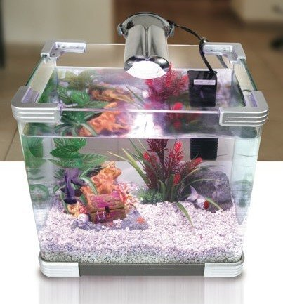 My first fish tank arcadia arc 35l imyfish 39 s blog for First fish tank